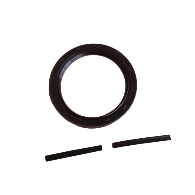 Rear Main Seal Gasket Kit with Pins